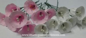 Pink and White Crepe Paper Flowers