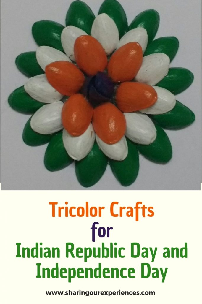 Tricolor craft with pista_pin