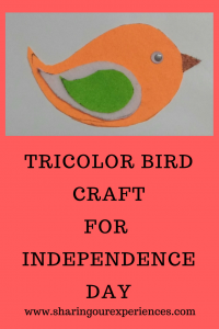 Tricolor Independence day crafts and activities for adults and kids