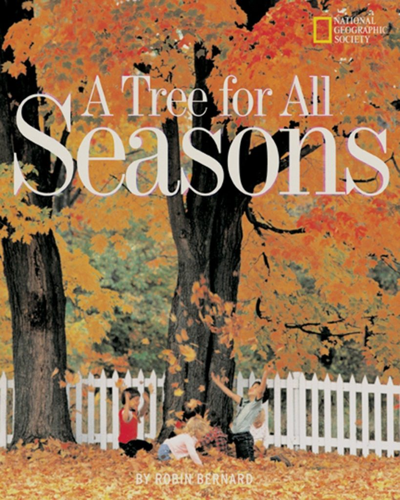 A tree for all seasons popular fall books for kids