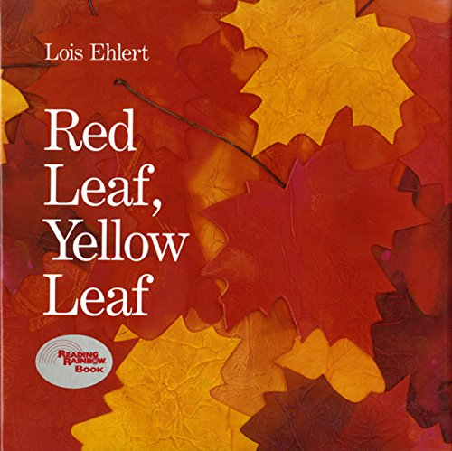 Red leaf yellow leaf popular Fall books for kids