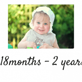 Age 18 months - 2 years