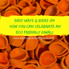Easy ways and Ideas on How you can celebrate an eco friendly Diwali (2)