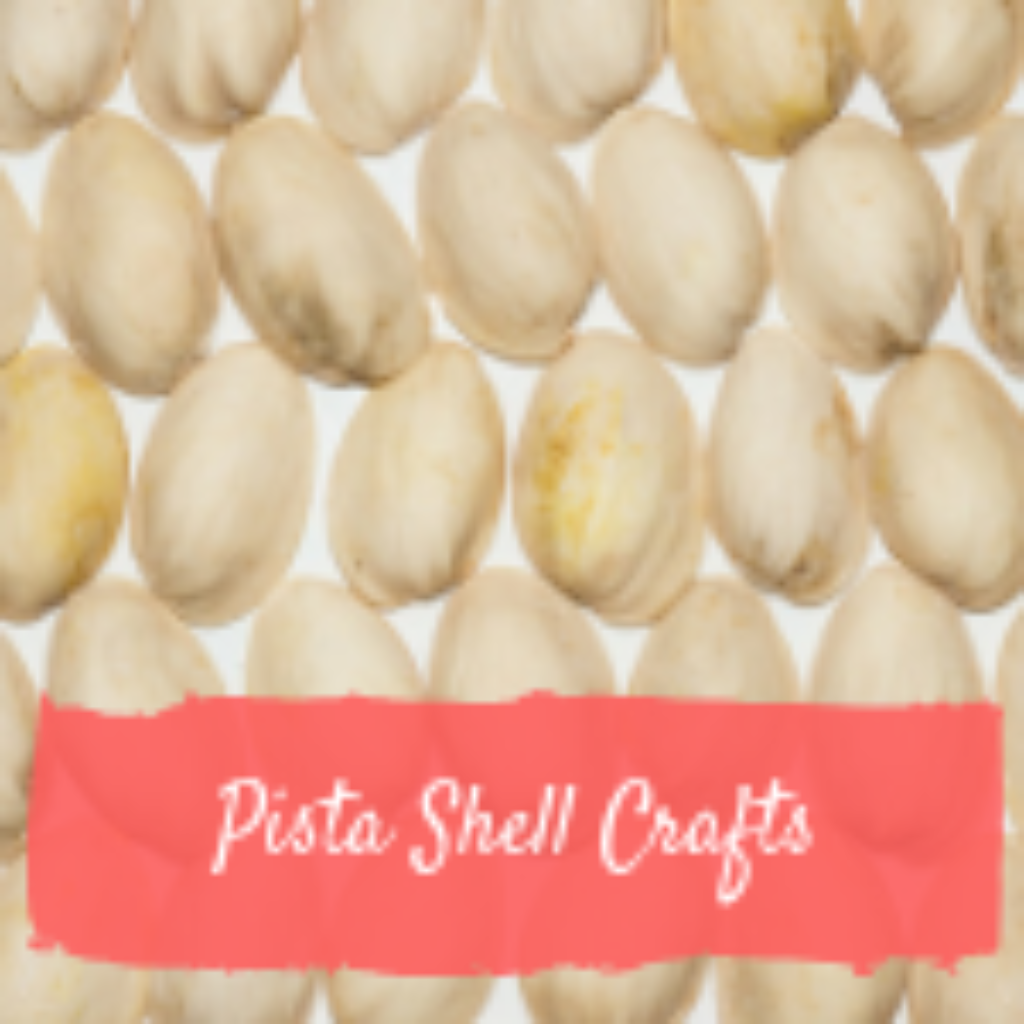 Pista shell Crafts