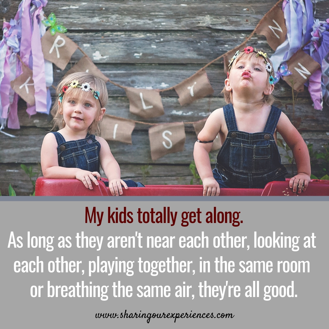 My kids totally get along,As long as they arent near each other,looking at each other,playing together, in the same room, or breathing the same air, they are all good