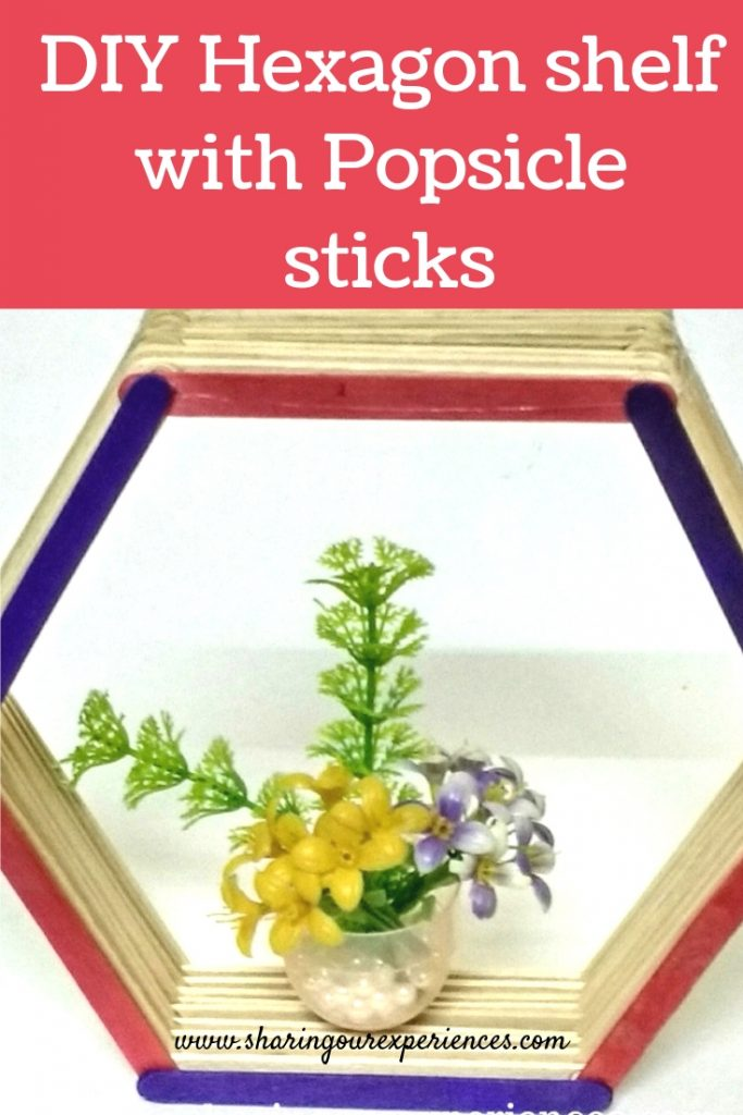 Popsicle stick hexagonal shelf_pin