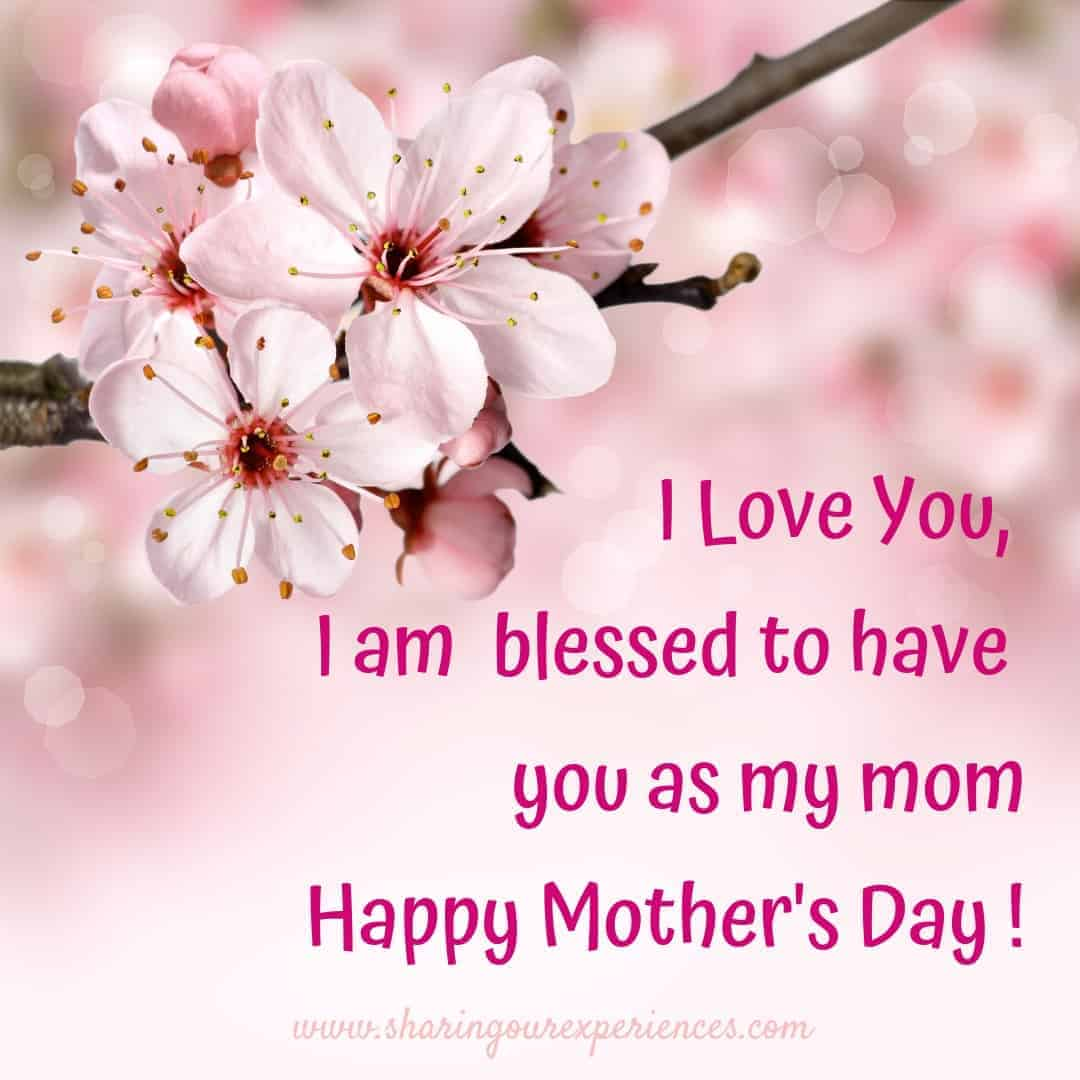 Mother's Day Wishes and Greetings