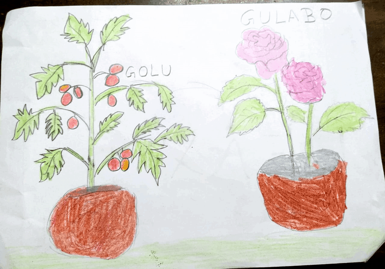 Gulabo and Golu short story written by Devyansh mishra