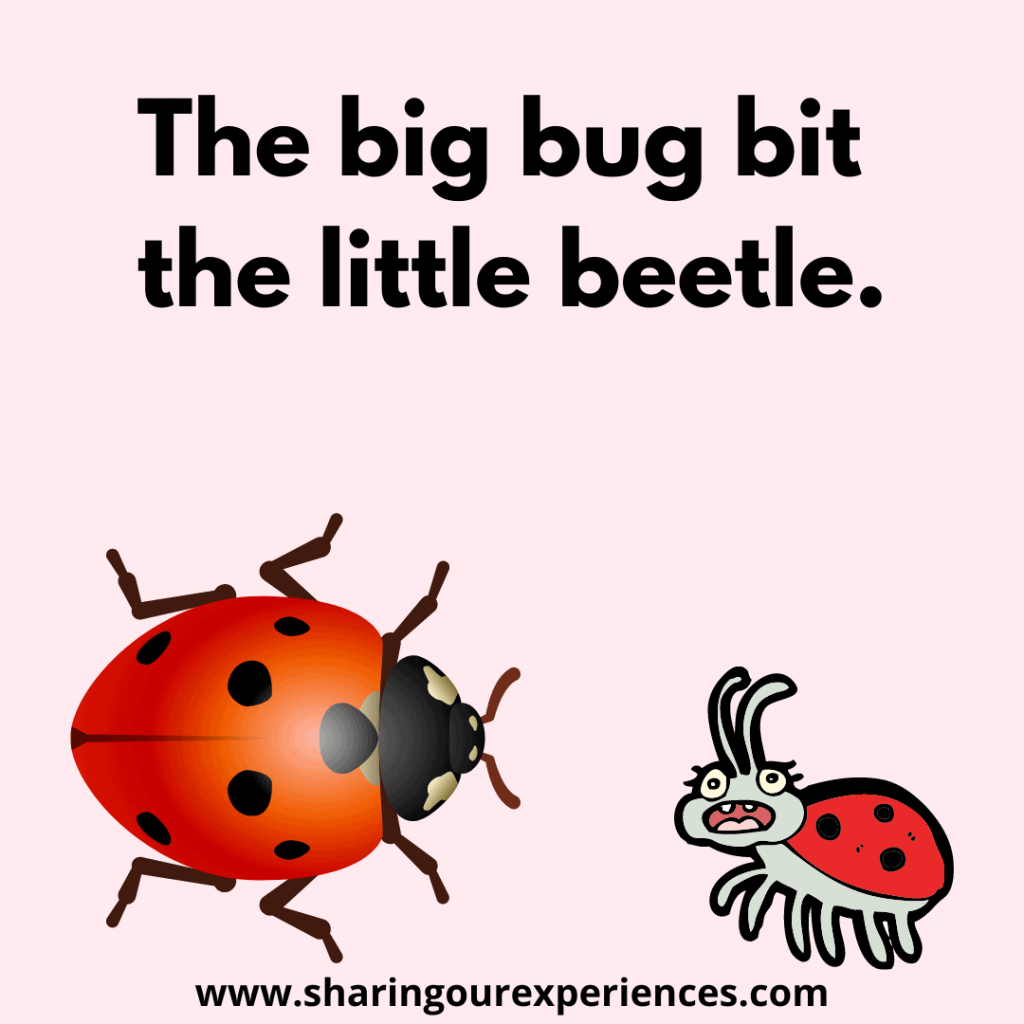 Easy and funny English tongue twisters for children. The big bug bit the little beetle.png