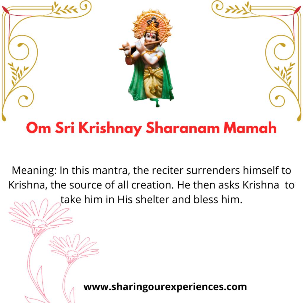 Popular and easy Sanskrit  Krishna Shlok and Mantra with meanings - Om Sri Krishnay Sharanam Mamah