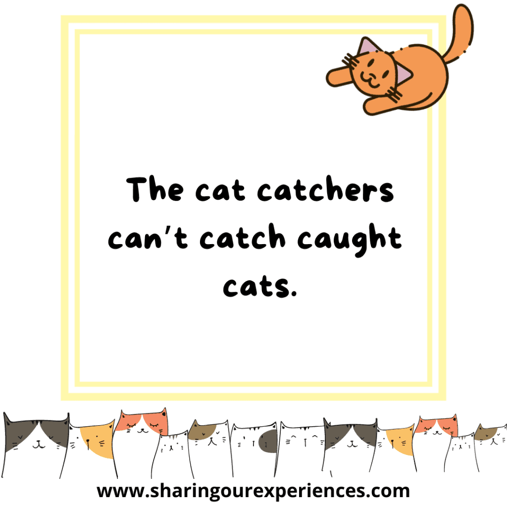 Famous and funny English tongue twister for kids The cat catchers can't catch caught cats.