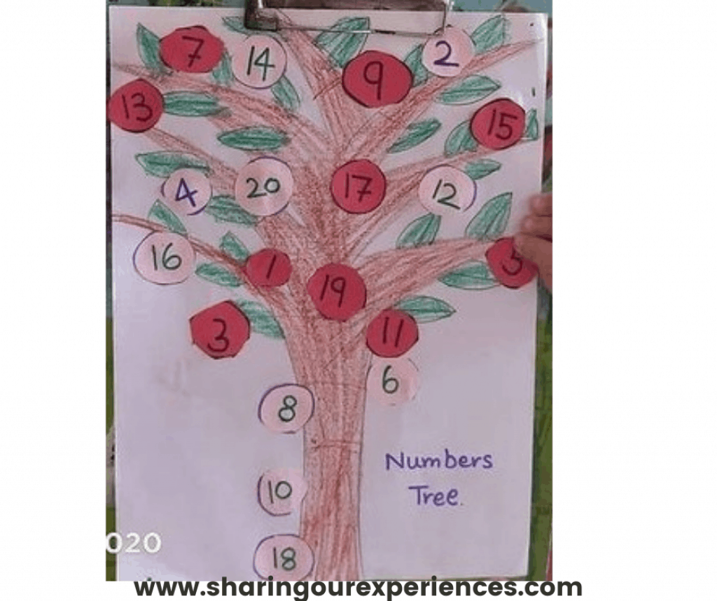 Number tree to teach odd even concept for toddlers, preschoolers and kindergarten. Perfect for summer vacation activity or school project idea for odd-even numbers.