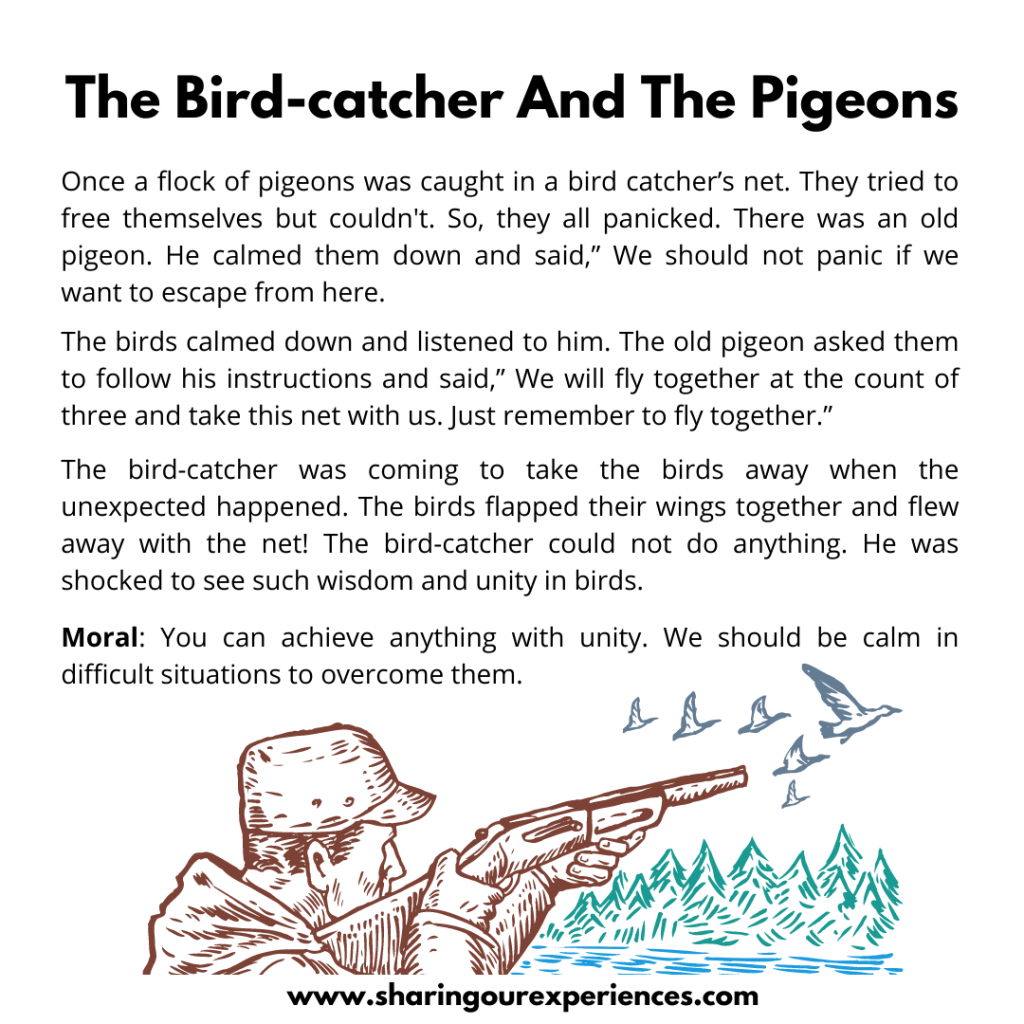 Most Popular Moral Stories For Kids- The Birdcatcher And The Pigeon