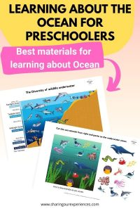 Learning about the ocean for preschoolers