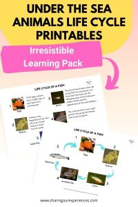 under the sea animals life cycle printables