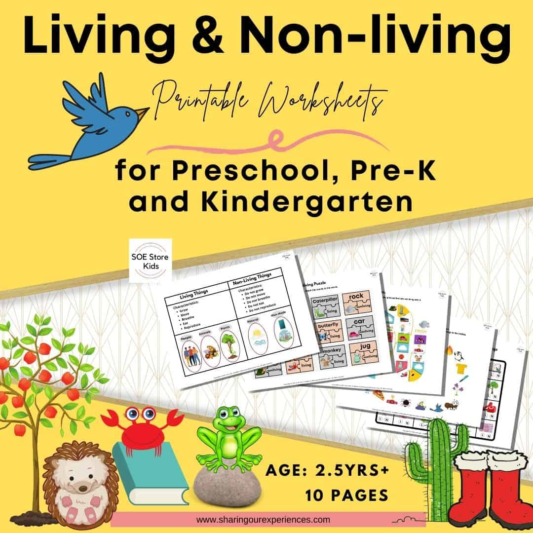 NO PREP- Life Science Lesson on Living and Non-Living Things Worksheets!