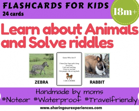 Animals and Riddles flash cards