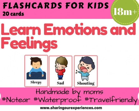 Emotions and Feelings Flash cards image