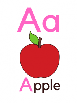 SOE Store Alphabets Flashcards for Kids Travelfriendly Flashcards Learn Alphabets ABC Easily 1