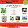 Animals Flashcards for kids (Includes Wild, domestic and Aquatic animals)| #Travelfriendly #Handmade by #moms #Flashcards #Realimages#Learnanimals #enhancevocabulary